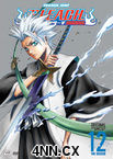 Bleach DVD 12