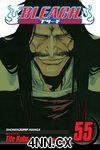 Bleach GN 55