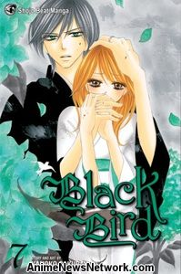 Black Bird GN 7