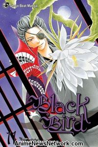 Black Bird GN 11