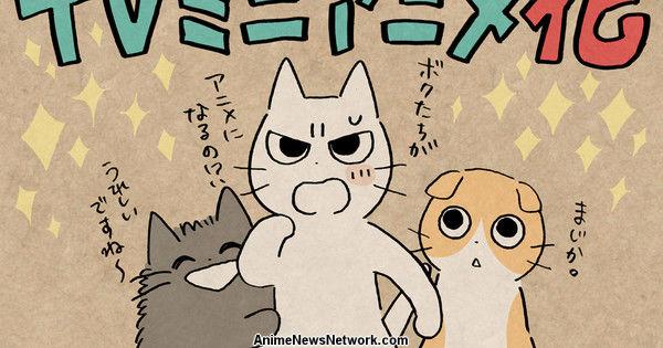 Этой весной персонаж Сикарунеко вдохновляет мини-аниме